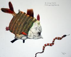Der quergestreifte Schlangenjägerbarsch